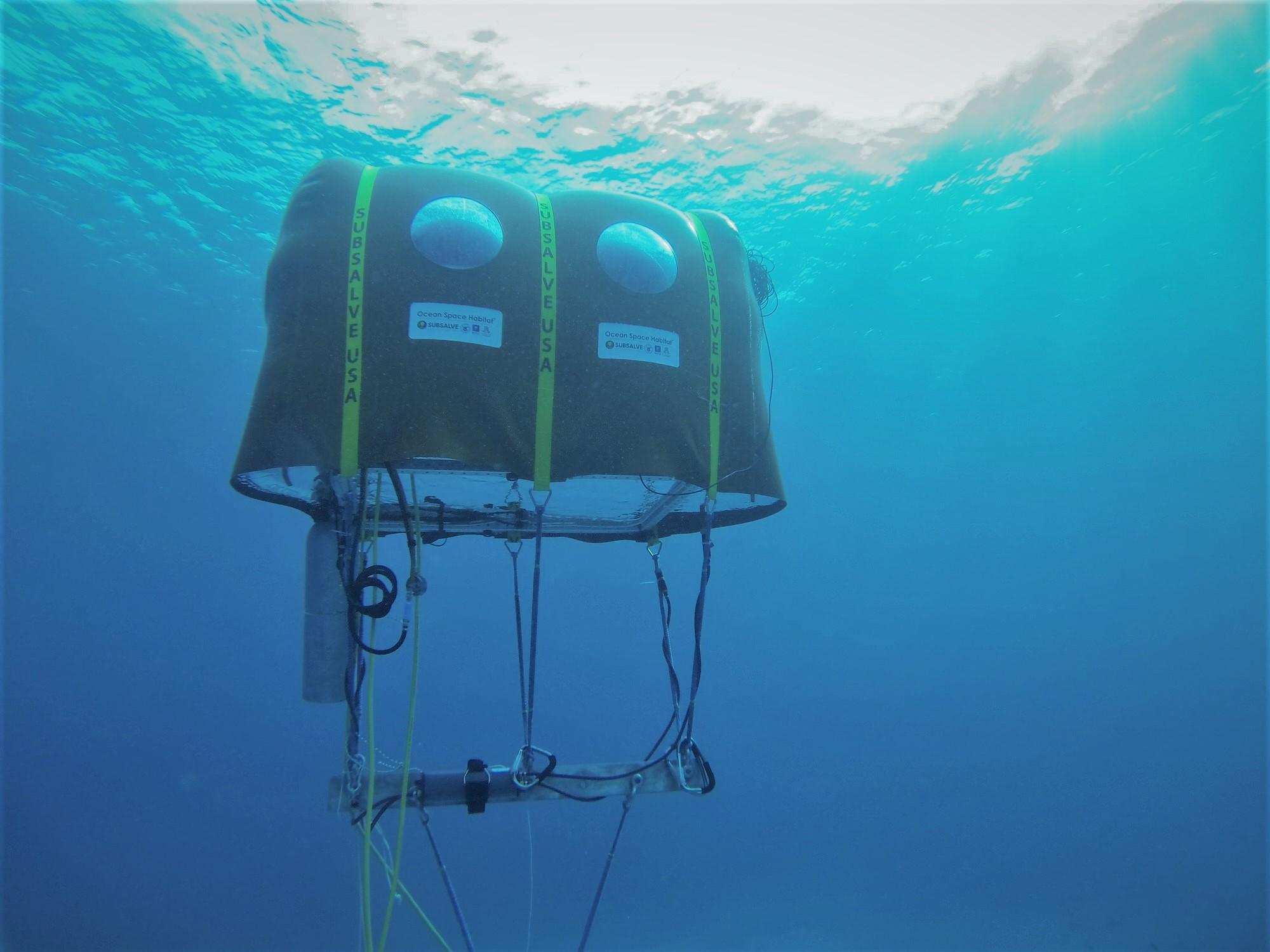 UArizona Professor's Underwater Tent Invention to Appear on Shark Week